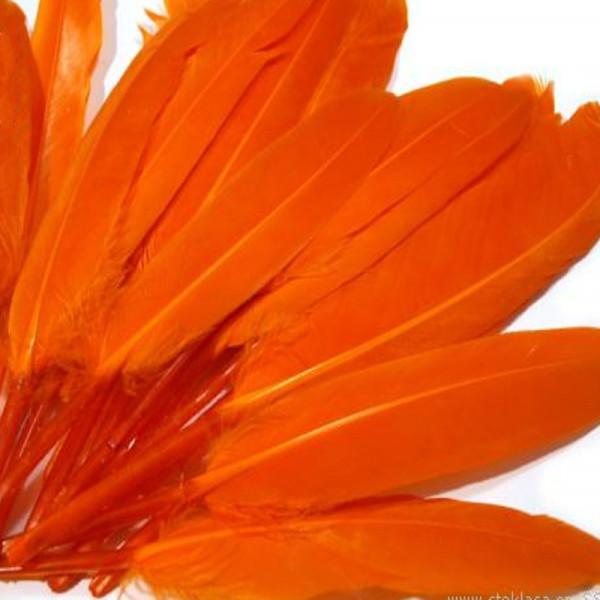 20 Entenfedern orange kaufen