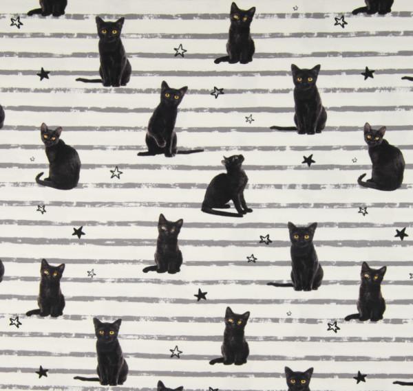 Jersey Digitaldruck Katzen