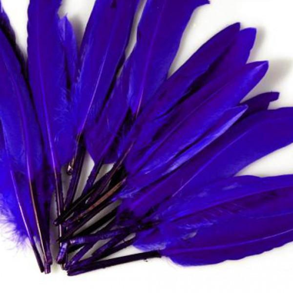 20 Entenfedern basteln Kobalt Blau