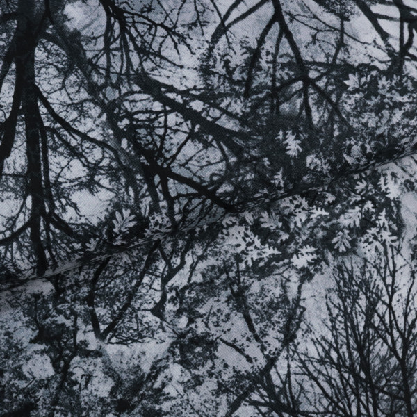 Wicked Grey Trees